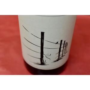赤ワイン サヴェージ / シーフ・イン・ザ・ナイト  [2017] wineholic