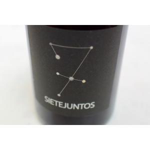 赤ワイン イスマエル・ゴザロ・ワイン / シエテフントス・シラー [2016]|wineholic