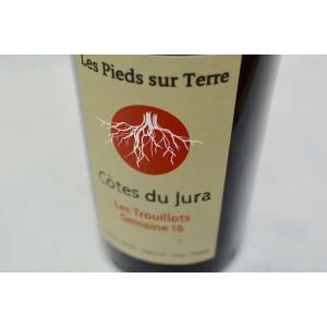 赤ワイン ドメーヌ・モレル / コート・デュ・ジュラ ルージュ・レ・トゥルイヨ・スメーヌ 16  [2017]|wineholic