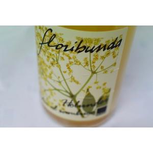 シャンパン(泡物) エッゲル・フランツ / スィドロ・アイ・フィオ−リ・ディ・サンブーコ [2018]|wineholic