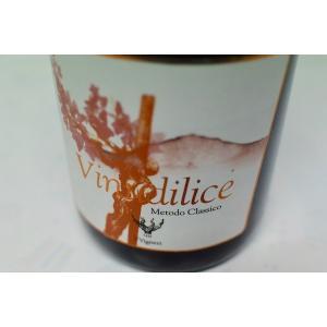シャンパン(泡物) イ・ヴィニェーリ / ヴィヌディリーチェ・スプマンテ [2015]|wineholic