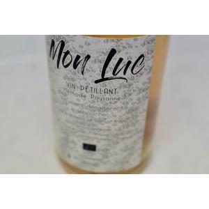 シャンパン(泡物) アンヌ・エ・ジャン・フランソワ・ガヌヴァ / ヴァン・ド・ターブル・ブラン・モン・リュック [2017]|wineholic