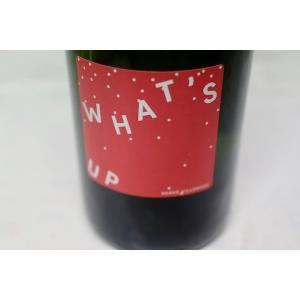 シャンパン(泡物) エルヴェ・ヴィルマード / ペット・ナット・ブラン・ワッツ・アップ [2018]|wineholic