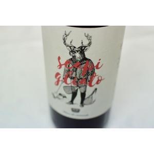 赤ワイン カラファータ / トスカーナ・スカピリアート [2018] wineholic