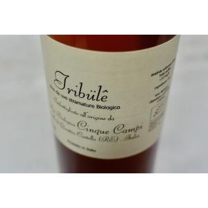 甘口ワイン チンクエ・カンピ / ヴィーノ・ダ・ウーヴェ・ストラマトゥーレ ビオロジコ トリブーレ [2015]|wineholic