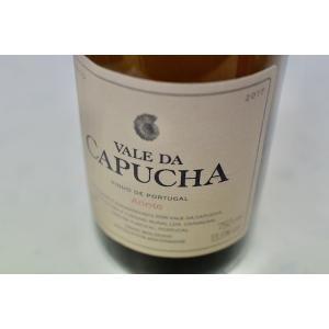 白ワイン ヴァレ・ダ・カプーシャ / ヴァレ・ダ・カプーシャ・アリント [2017]|wineholic