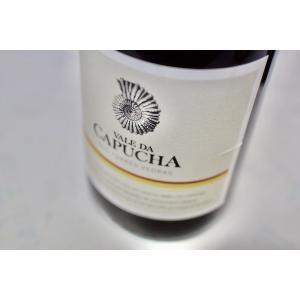 白ワイン ヴァレ・ダ・カプーシャ / トーレス・ヴェドラシュ・ブランコ [2016]|wineholic