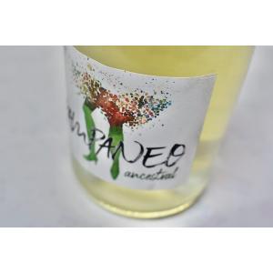 シャンパン(泡物) エセンシア・ルラル / パンパネオ アイレン アンセストラル ナチュラル・ワイン [2018]|wineholic