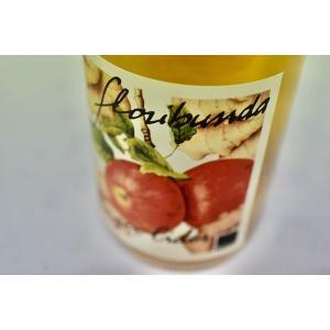 シャンパン(泡物) エッゲル・フランツ / スィドロ アッロ ゼンゼロ [2019] wineholic