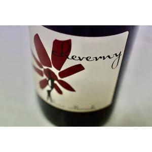 赤ワイン エルヴェ・ヴィルマード / シュヴェルニ・ルージュ ドメーヌ [2019]|wineholic