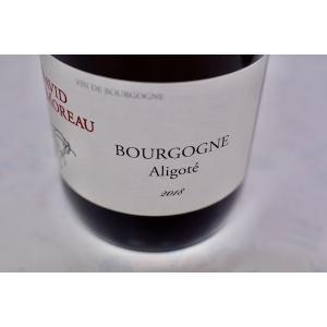 白ワイン ドメーヌ・ド・ラ・ビュイシエール(ダヴィッド・モロー)/ ブルゴーニュ・アリゴテ [2018]|wineholic
