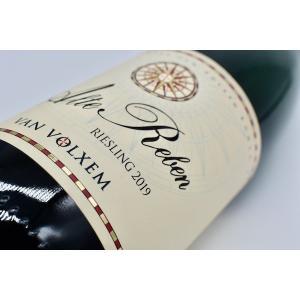 白ワイン ファン・フォルクセン / アルテ・レーベン・リースリング [2019] wineholic