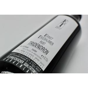赤ワイン エルンスト・トリーバウマー / トリデンドロン [2017]|wineholic
