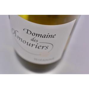 白ワイン ドメーヌ・ド・ザムリエ / ヴァン・ド・ペイ・ヴォークリューズ・スザンヌ [2019]|wineholic