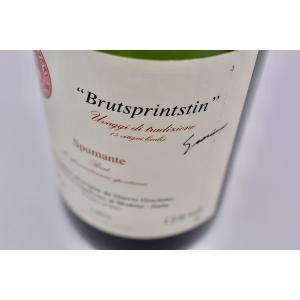 シャンパン(泡物) ヴィットーリオ・グラツィアーノ / ブリュット・スプリングスティン [2015] wineholic