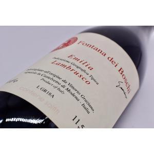シャンパン(泡物) ヴィットーリオ グラツィアーノ / ランブルスコ・フォンタナ・デイ・ボスキ [2018] wineholic