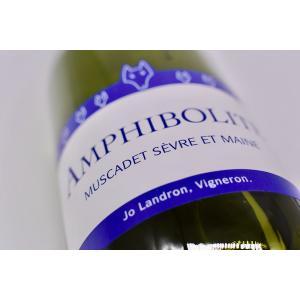白ワイン ドメーヌ・ランドロン / ミュスカデ アンフィボリット・ナチュール [2019]|wineholic