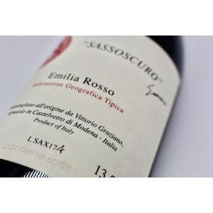 赤ワイン ヴィットーリオ・グラツィアーノ / サッソスクーロ [2017]|wineholic