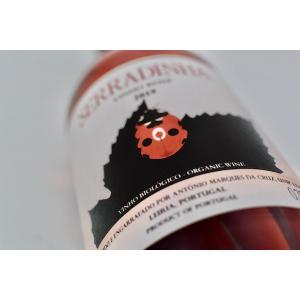 ロゼ キンタ・ダ・セッラディーニャ / トゥリガ・ナシオナル・ロゼ [2019]|wineholic