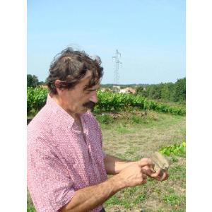 シャンパン スパークリングワイン ドメーヌ・ランドロン・ヴァン・ムスー|wineholic|05
