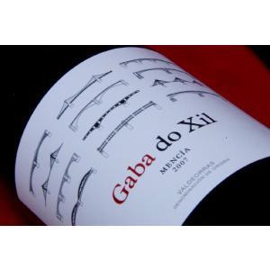 赤ワイン テルモ・ロドリゲス ガバ・ド・イクシル・メンシア 2007年|wineholic