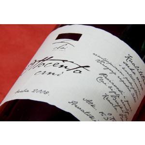 クライ・ビエーレ・ゼミエ オットチェント・ツルノ 2008 wineholic