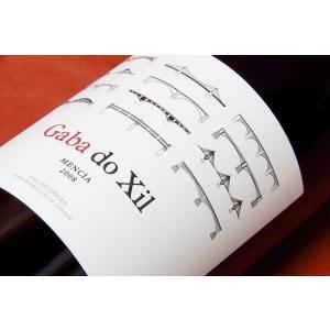 赤ワイン テルモの造り出すメンシアは実に旨い! テルモ・ロドリゲス / ガバ・ド・イクシル・メンシア  2008|wineholic