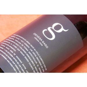 赤ワイン さすが2009年出来が違う! テルモ・ロドリゲス / デヘサ・ガゴ 2009|wineholic