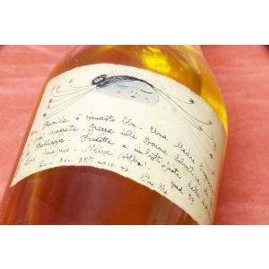 グラッパ ロマーノ・レヴィー / ドンナ・セルヴァティカ・レゼルヴァ 1980年 59%|wineholic