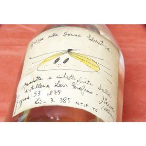 グラッパ ロマーノ・レヴィー / ドンナ・セルヴァティカ 1990年 53%|wineholic