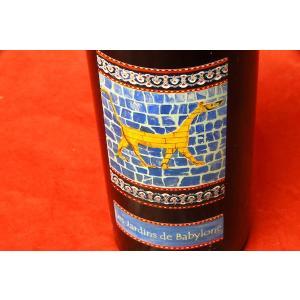 白ワイン ディディエ・ダグノー / ジュランソン・レ・ジャルダン・ド・バビロン [2007] 500ml wineholic