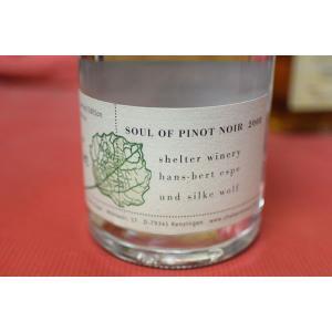 シュナップス シェルター・ワイナリー / ソウル・オブ・ピノ・ノワール [2008] 375ml|wineholic