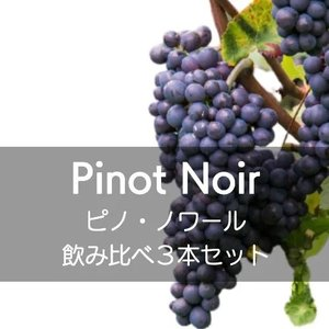 ワインセット ピノ・ノワール飲み比べ3本セット!【ワインセット】|wineholic