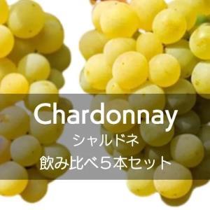 シャルドネ飲み比べ5本セット【ワインセット】|wineholic