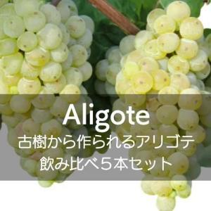 アリゴテ飲み比べ4本セット【ワインセット】|wineholic