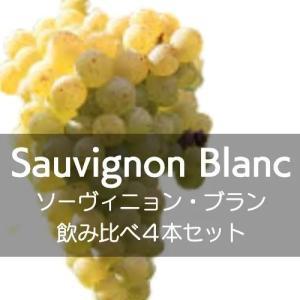 ソーヴィニョン・ブラン飲み比べ4本セット【ワインセット】|wineholic