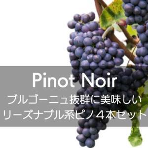 ワインセット フランス・ブルゴーニュ、抜群に美味しいリーズナブル系ピノ・ノワール4本セット【ワインセット】|wineholic