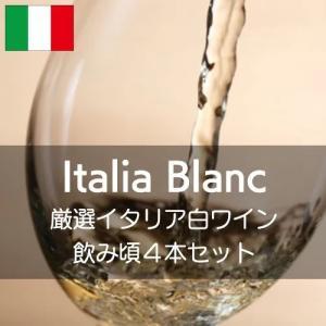 厳選イタリア白ワイン飲み頃4本セット【ワインセット】|wineholic