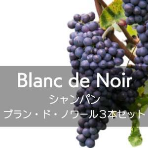 シャンパン、飲み比べブラン・ド・ノワール3本セット【ワインセット】|wineholic