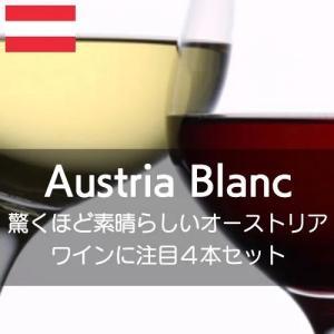 驚くほど素晴らしいオーストリアワインを堪能する白3本、赤1本の4本セット!【ワインセット】 wineholic