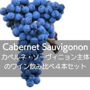 ワインセット いろいろな地域のカベルネ・ソーヴィニョン主体のワイン飲み比べ4本セット!【ワインセット】|wineholic
