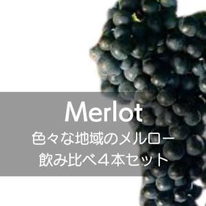 ワインセット いろいろな地域のメルロー主体のワイン飲み比べ4本セット!【ワインセット】|wineholic