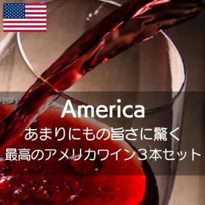 あまりにもの旨さに驚く最高のアメリカワイン!【ワインセット】|wineholic