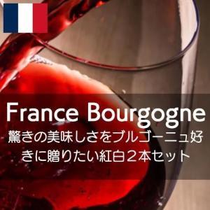 驚きの美味しさブルゴーニュ好きに贈りたい紅白セット!【ワインセット】|wineholic