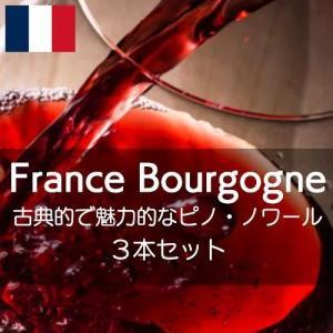 フランス・ブルゴーニュ・古典的で魅力的なピノ・ノワールを堪能する【ワインセット】|wineholic