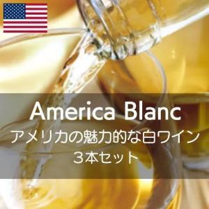 ワインセット アメリカの魅力的な白ワインを楽しむ【ワインセット】|wineholic