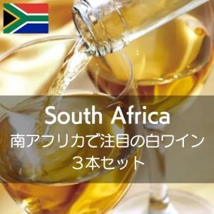 南アフリカで注目の白ワインを知る【ワインセット】|wineholic