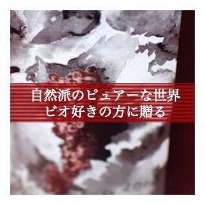 自然派好きの方にはお薦めです!紅白セット【ギフトセット】【ギフトセット】|wineholic