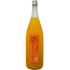 フルフル 完熟マンゴー梅酒 1.8L...
