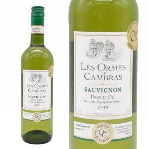 レ・ゾルム・ド・カンブラス ソーヴィニヨン・ブラン キュヴェ・レゼルヴ 2017年 750ml (フランス ラングドック・ルーション 白ワイン)|wineuki